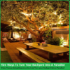 Five Ways To Turn Your Backyard Into A Paradise | Great Tips About Patio