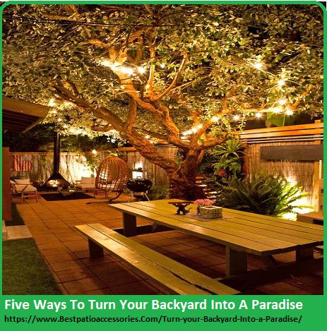 Turn Your Backyard
